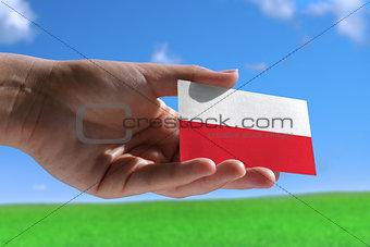 Small Polish flag