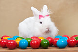 Cute easter bunny sitting iamong colorful eggs