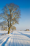 Winter road in the countryside, a beautiful winter day
