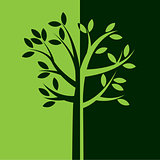Simple Green Tree with Leaves Illustration