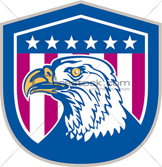 American Bald Eagle Head Side Stars Retro