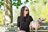 Young girl  with  greyhound in the park