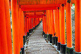 Fushimi Inari Taisha Shrine in Kyoto