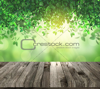 3D lwooden table eaves and sunlight