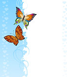 Background of colorful butterflies