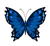 Blue vector butterfly