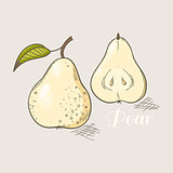 Vector illustration of yellow pear