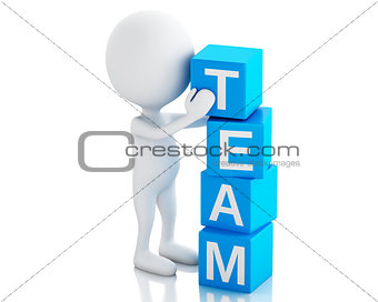 3d white people with cubes with word team