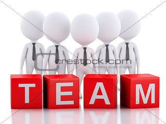 3d white business people. Team concept. Isolated white