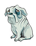 Cartoon grey bulldog with sad eyes