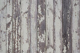 Old grunge fence of wood panels