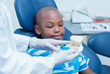 Cropped dentist showing boy prosthesis teeth