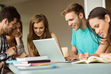 Smiling friends sitting studying and using laptop
