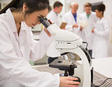 Young medical student working with microscope