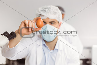 Food scientist looking at an egg