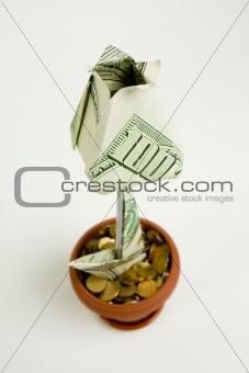 Monetary flower