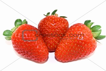 Three strawberries closeup isolated on white