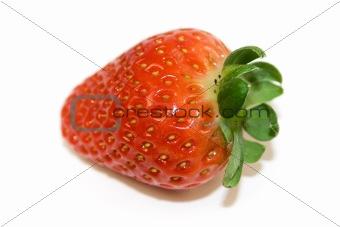 One strawberry closeup