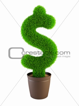 growing dollar symbol