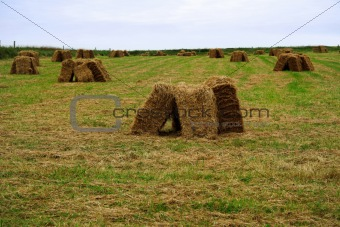 old bales