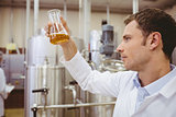 Focused scientist looking beaker with beer