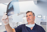 Serious dentist examining a x-ray