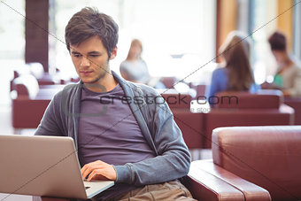 Focused young student studying on couch