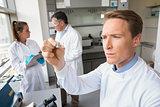 Scientist looking at test slide