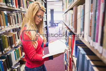 Mature student studying in the library