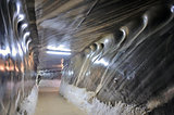 Inside the salt mine