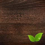 Wooden Texture With Leaf