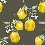 Lemon pattern4