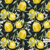 Lemon pattern6