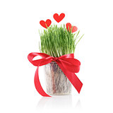 Green grass and red paper hearts