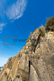 Cliff in Riomaggiore Liguria Italy