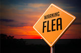 Flea on Warning Road Sign.