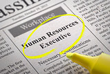 Human Resources Executive Vacancy in Newspaper.