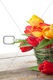 Fresh colorful tulips in basket