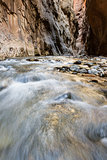 the Narrows in Zion NP