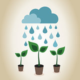 Rain on plant