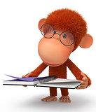 The monkey wearing spectacles reads