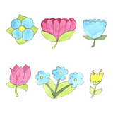 Watercolor flowers set, cute design elements collection