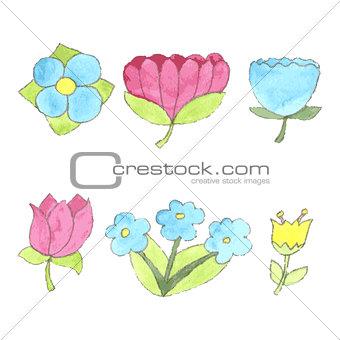 Watercolor flowers set, cute design elements collection