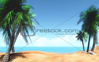 3D tropical landscape