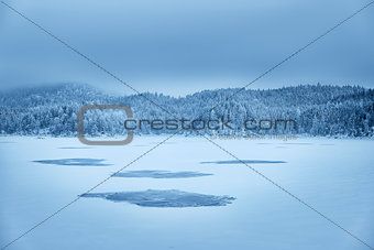 Forest and lake Eibsee with snow Bavaria
