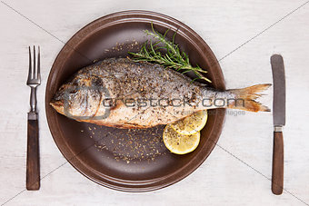 Grilled fish on plate, top view.