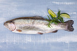 Delicious trout.
