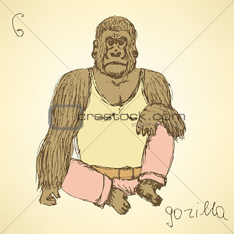 Sketch fancy gorilla in vintage style