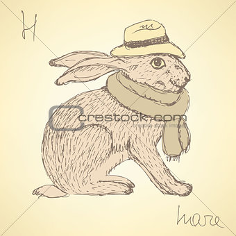 Sketch fancy hare in vintage style