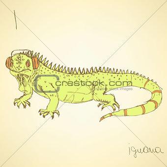 Sketch fancy iguana in vintage style